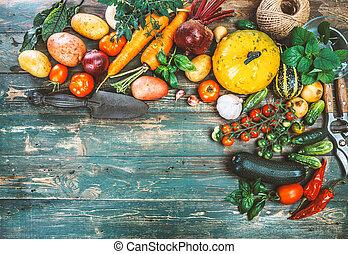 Harvest fresh vegetables on old wooden board