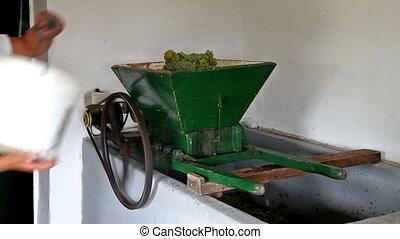 Harvest - Grape pressing