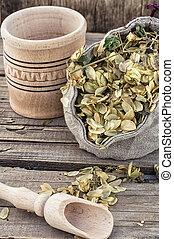 harvest hop cones cut