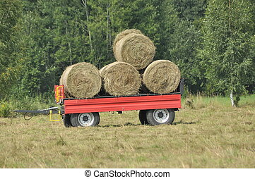 Harvest in the fields. Straw bales collapsed. End of summer