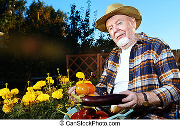 harvest in the garden - Smiling senior man with his harvest...