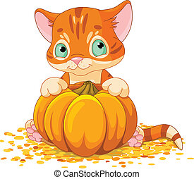 Harvest Kitten - Cute little kitten holding giant pumpkin
