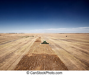 Harvest Landscape - A group of harvesters on the open...