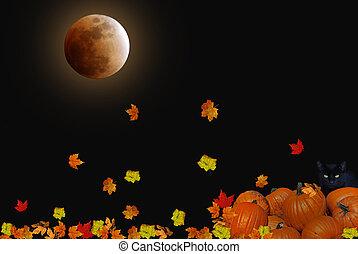 Harvest Moon - Full moon with falling leaves on pumpkins.