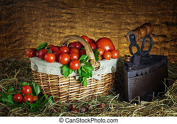 Harvest of Cherry Tomatoes