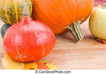Harvest of pumpkins on a table