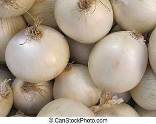 Harvest of white onions