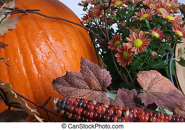 Harvest plenty - Flowers, corn, leaves and a pumpkin show...
