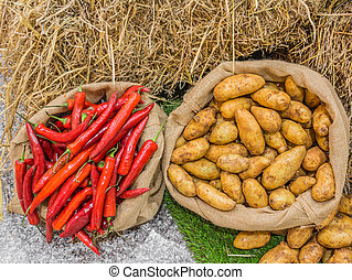 Harvest potatoes and red chili in burlap sack on rustic backgrou