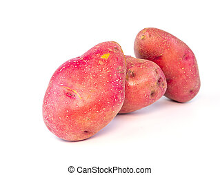 Harvest potatoes on a white background with place for text.