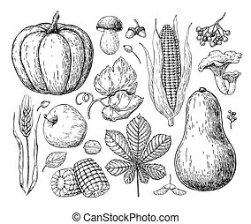 Harvest products. Hand drawn vintage vector illustration with pu