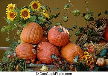 Pumpkins and sunflowers, harvest on Halloween
