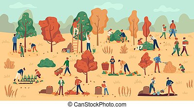 Harvest season. Farmers on plantation collecting fruits, vegetables and berries. Stacking hay, agricultural autumn work vector background