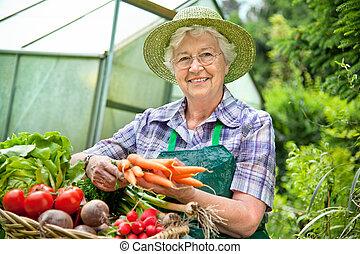 Harvest - Senior woman with a basket of harvested vegetables...