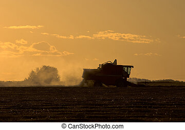 Harvest Time at Sunset