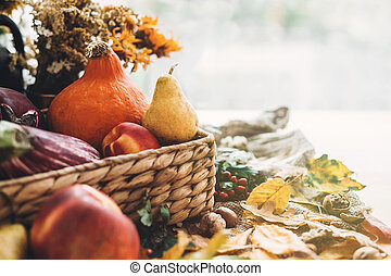 Harvest time. Happy Thanksgiving .Pumpkin and vegetables in basket and colorful leaves with acorns and nuts on wooden table in sunny light. Bright Fall image. Hello Autumn.