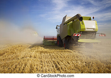 Harvest time - Harvester moving on the field producing big...