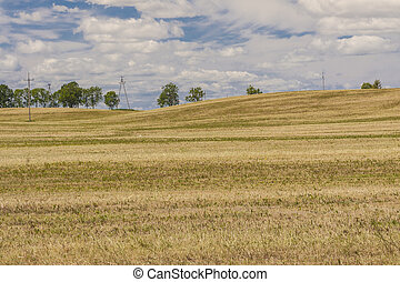 Harvest time - Polish rural view.