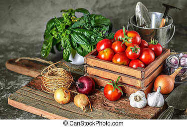 Harvest tomatoes in wooden box spicy herbs. Vector illustration.
