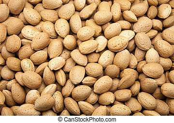 harvested almonds