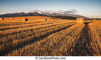 Harvested Field with Hay Bales Under Mountains