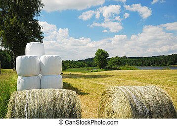 There are straw packages on the harvested field. Several bales in plastic film are stacked.