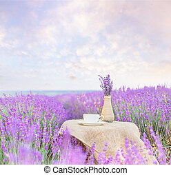 Harvested lavender flowers on white vase and blurred field on background.