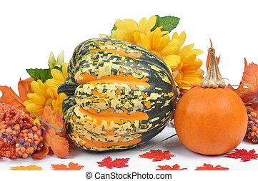 Harvested pumpkins