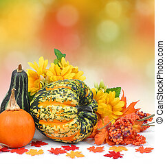 Harvested pumpkins with fall leaves - autumn background
