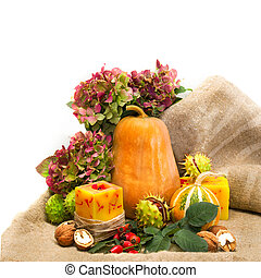 Harvested pumpkins with fall leaves, flowers and nuts, wild rose, over white.