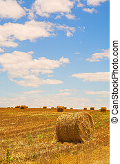 Straw bales on a harvested wheat field at Riversdale in South Africa on a sunny day