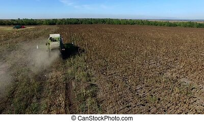 Harvester Collects Sunflowers. Aerial Survey 4K DJI Phantom...