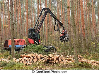 Harvester - Forestry heavy harvester chopping trees