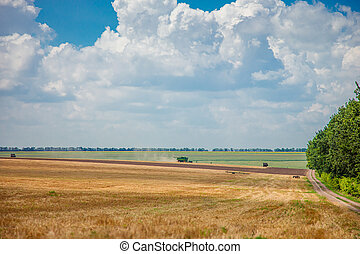 Harvester in the field harvest. Rural landscape of sky and field.