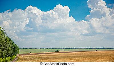 Harvester in the field harvest. Rural landscape of sky and...
