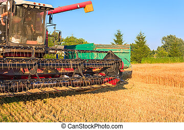 Harvester in the field of barley