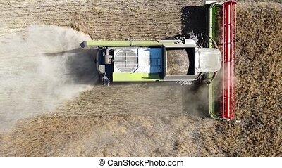 harvester mows rapeseed aerial video.