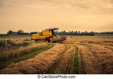 Harvester on a field at a farm
