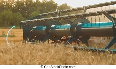 harvester removes the field of wheat bread agriculture slow...
