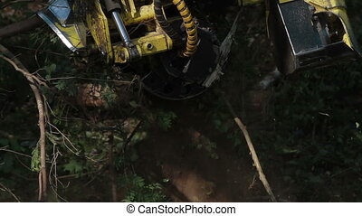 Harvester working in forest. Harvester pulls tree -...