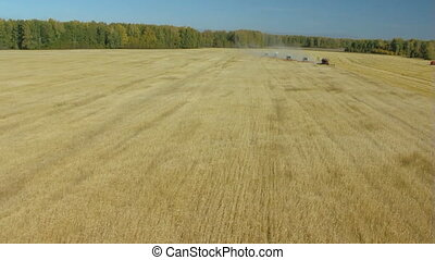 harvesting campaign 3