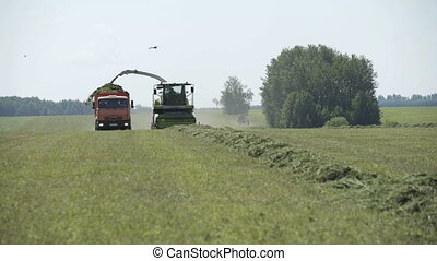 Harvesting herb with a Combine and Grain Cart - Farming...