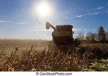 Harvesting Machine in action