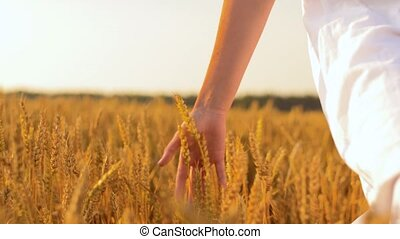 woman in white dress walking along cereal field - harvesting...