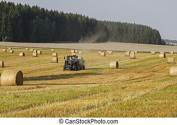 Harvesting of wheat straw