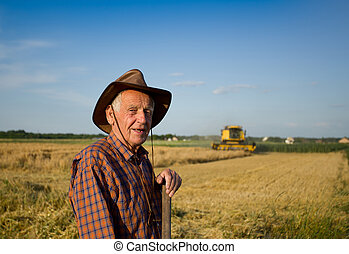 Harvesting - Smiling old peasant standing on field with ...