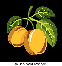 Harvesting symbol, vector fruits isolated. Two yellow...