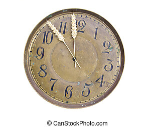 harvesting time concept-clock dial with wheat ears