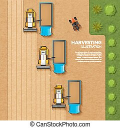 Harvesting top view illustration