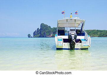 hastighed båd, ind, hav